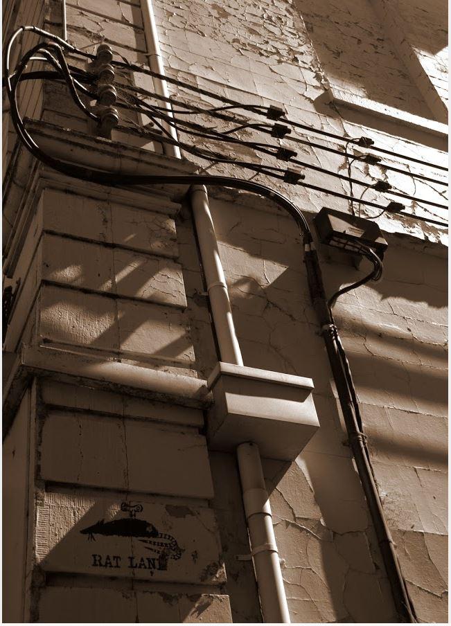rat_lane_ballarat_cbd_208_sturt_street_mckensie_street_photographer_cheryl_muir